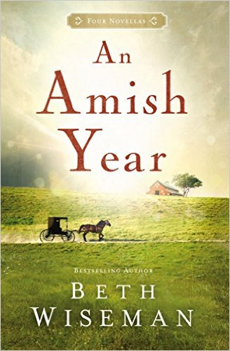 an-amish-year
