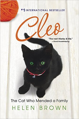 Cleo-the-cat-who-mended-a-family